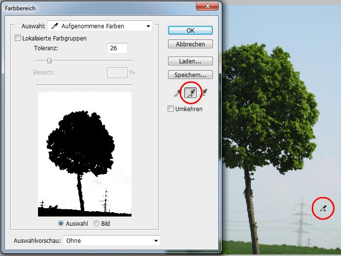 Baum-freistellen-Photoshop-Tutorial_05